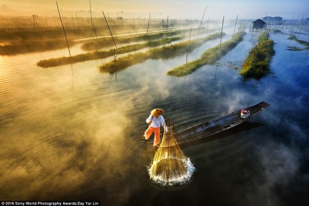 2DF29E7300000578-3296769-Zay_Yar_Lin_from_Burma_shared_this_image_of_a_fisherman_leg_rowe-a-1_1446458288444 - Copy