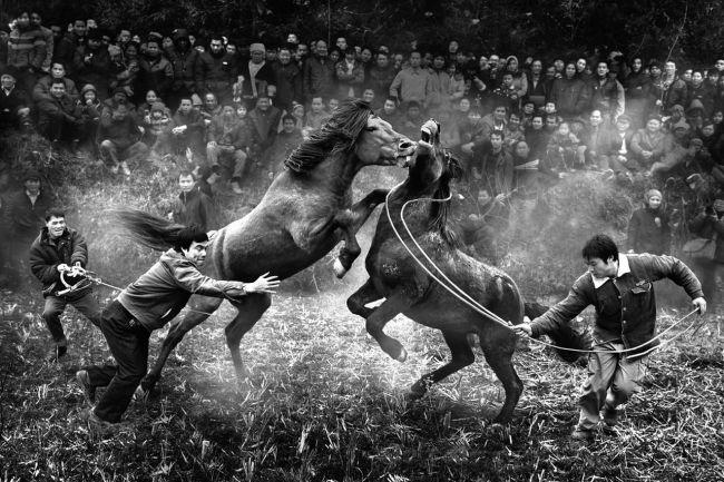 NgaiBunWonh_China_Shortlist_Open_Artsculture_2014