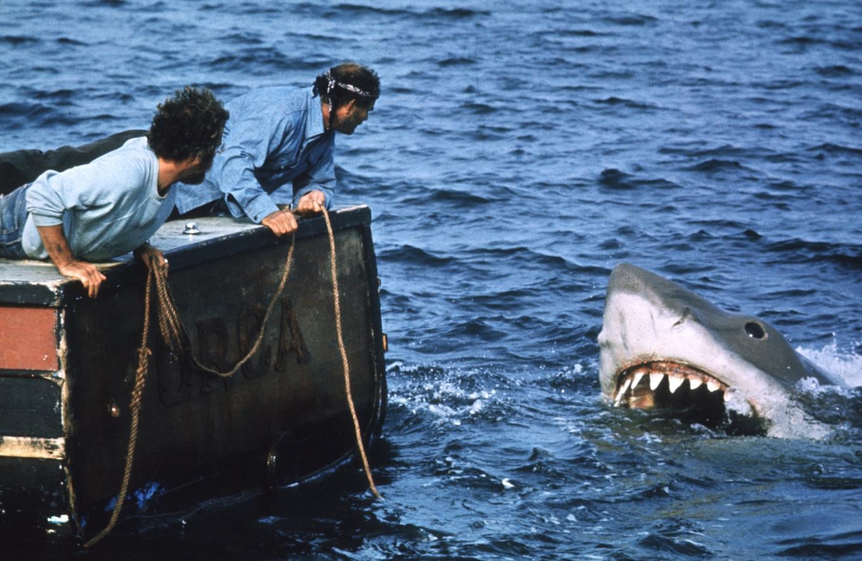 tiburon cinemark 3.jpg